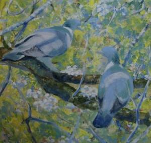 Pigeons - Step 2