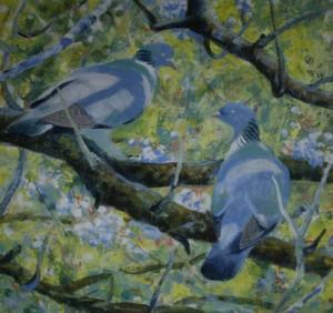 Pigeons - Step 3