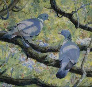 Pigeons - Step 4