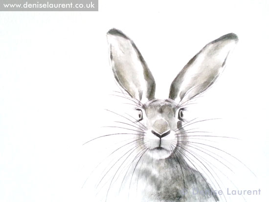 Peak A Boo Hare Sketch Denise Laurent