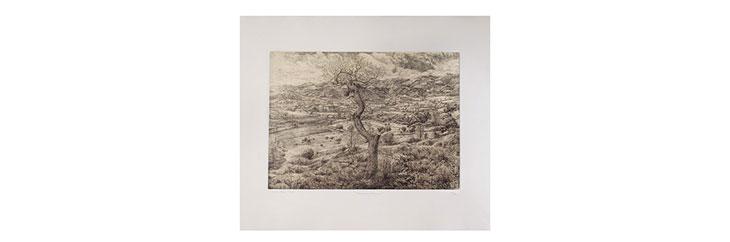 Fabriano Rosaspina printmaking paper