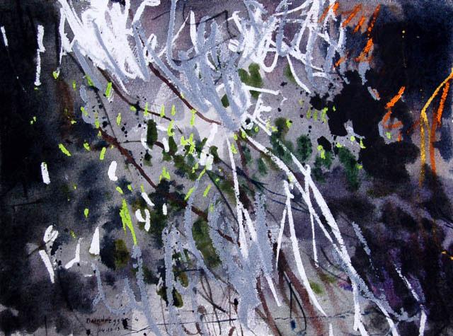 Heather-ad-lichen-on-rock