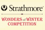 Wonders of Winter Art Competition