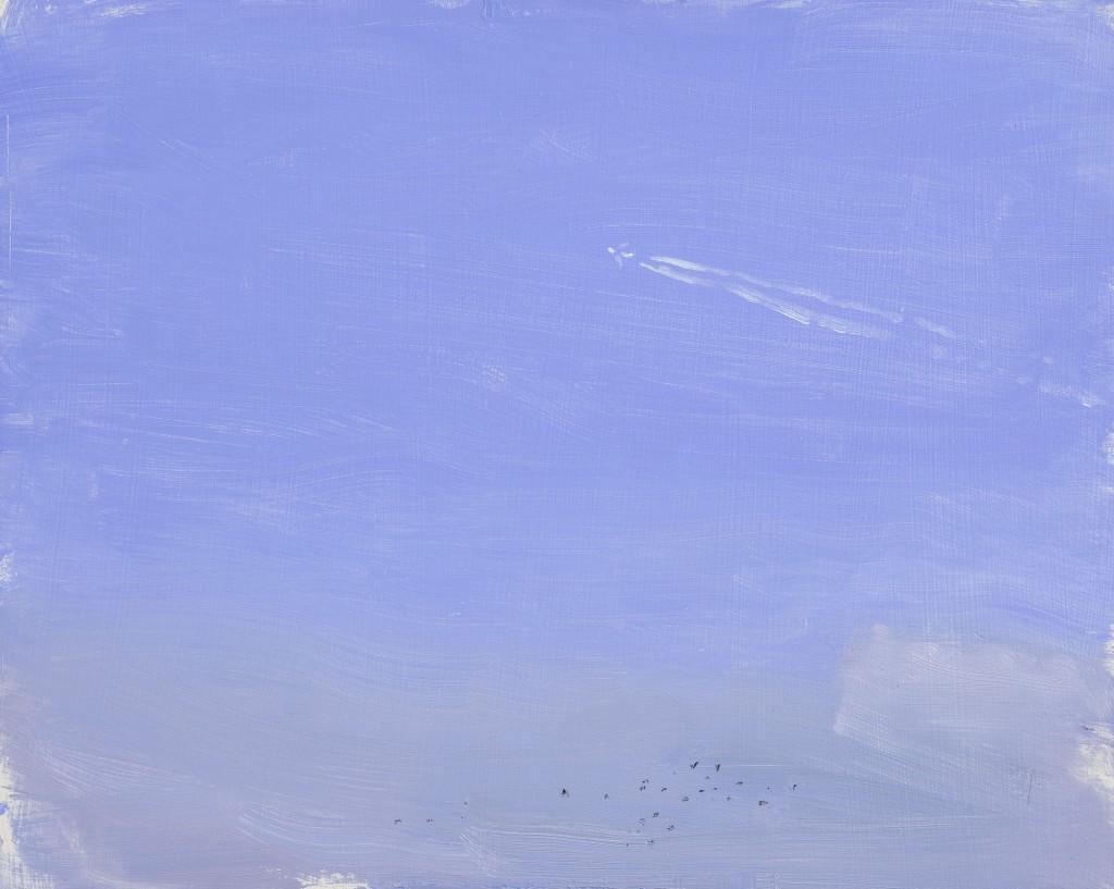 Danny Markey Plane and Jackdaws 2011 Oil on Board, 23.5cm x 29.5cm