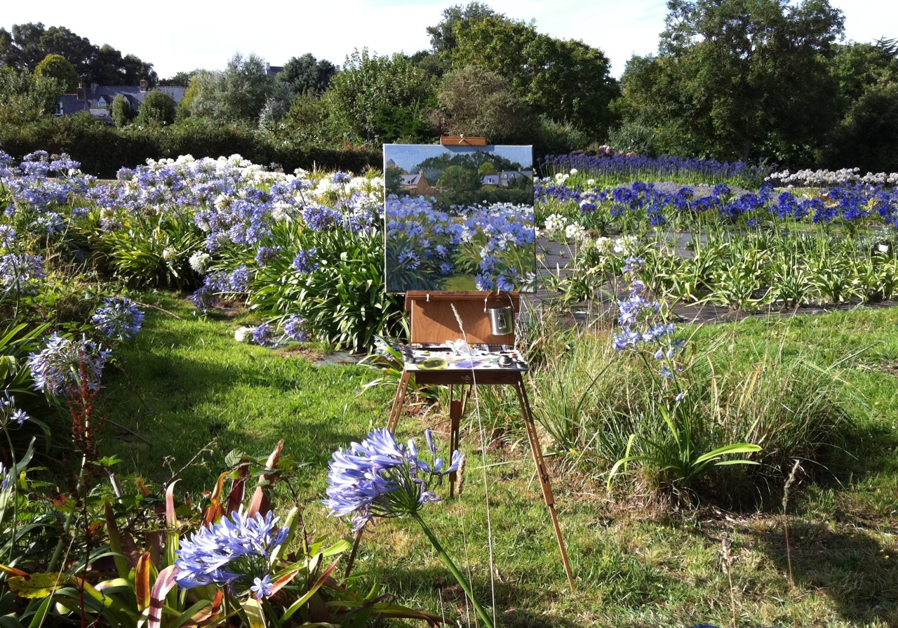 Painting agapanthus on the île de Bréhat