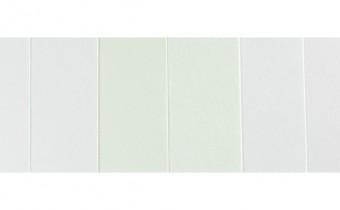 Stillman & Birn paper jacksonsart.com