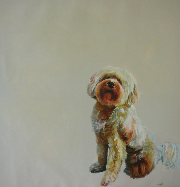 Andrew Walworth finished dog