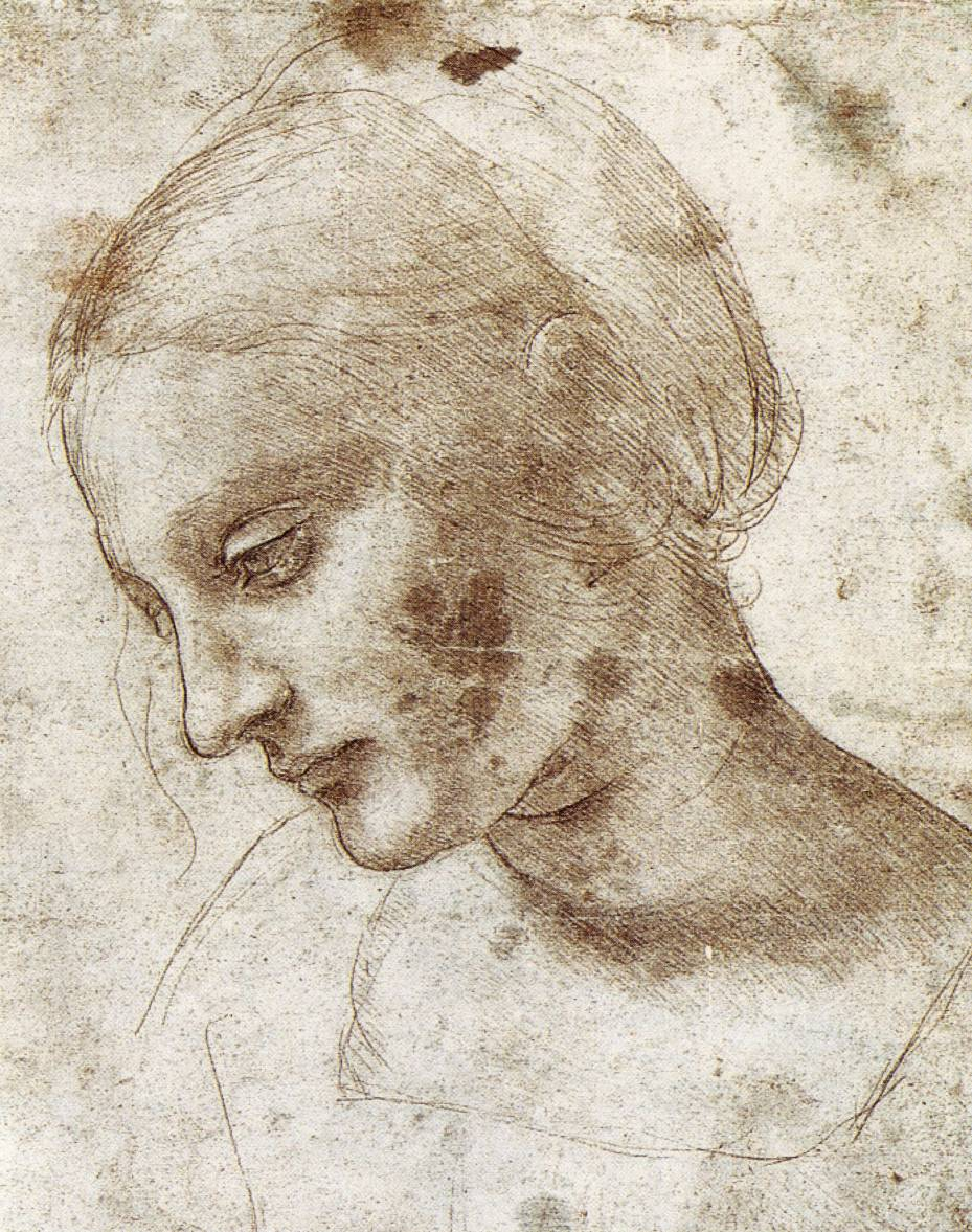 Contour Line Drawing Leonardo Da Vinci : Drawing good art s vital ingredient jackson