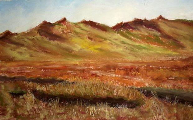 Mary Brigid Mackey: Commeragh Bog, 26cm x 38cm, 2013