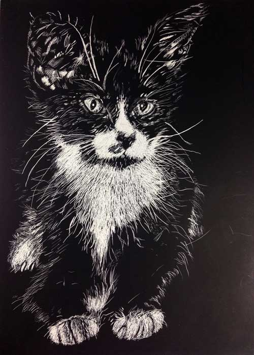 Lucy Tittle Drawing on Scratchbord