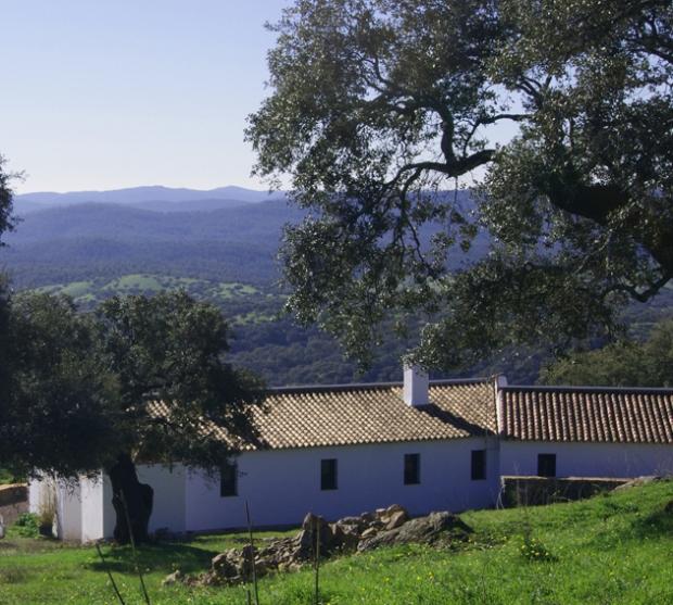 Finca Las Tobas: Accommodation