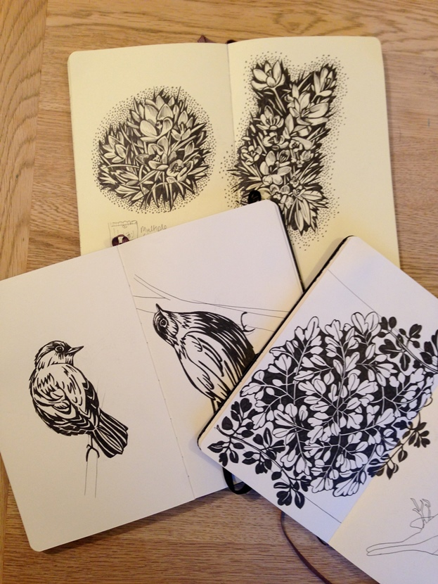 Observational drawings become patterns: Susie Heatherington's sketchbooks