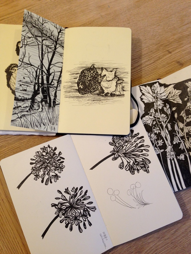 Susie Heatherington's beautiful ink drawings are bold and can naturally be developed into patterns
