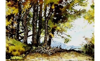 Creating Textured Landscapes with Pen, Ink and Watercolour by Claudia Nice