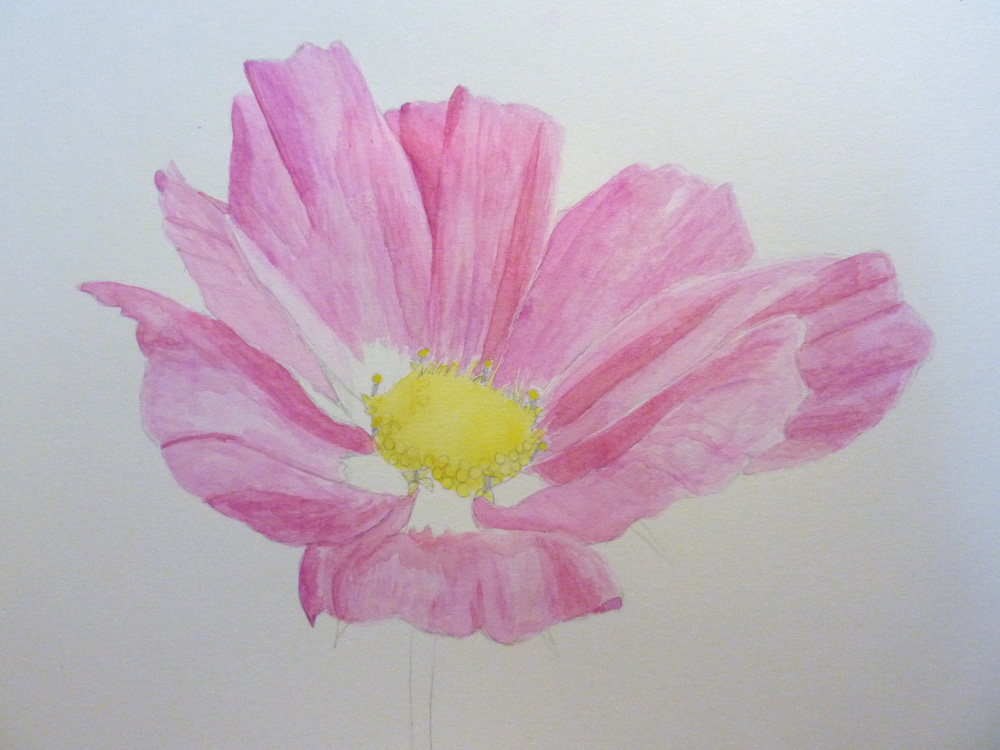 Emily Scard Learns Watercolour Realism
