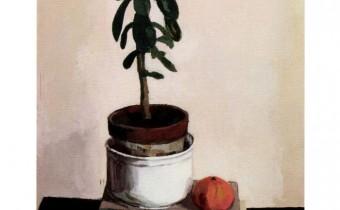 Adele Wagstaff painting still life in oils