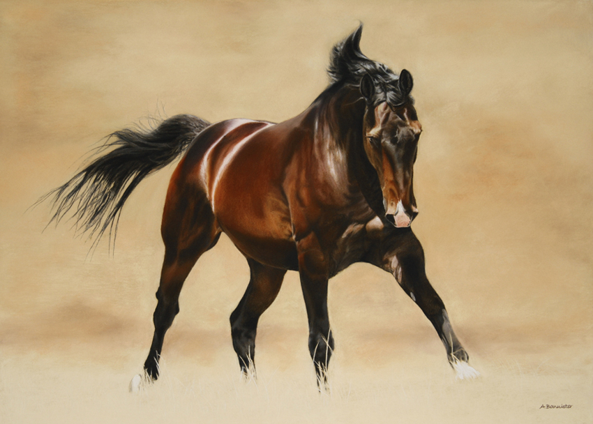 Ali Bannister: 'Calypso' Pastel on Pastel Card
