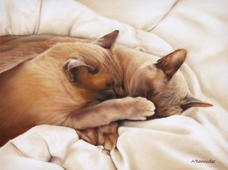 Ali Bannister: 'Ralfie and Rolo', Pastel on Card