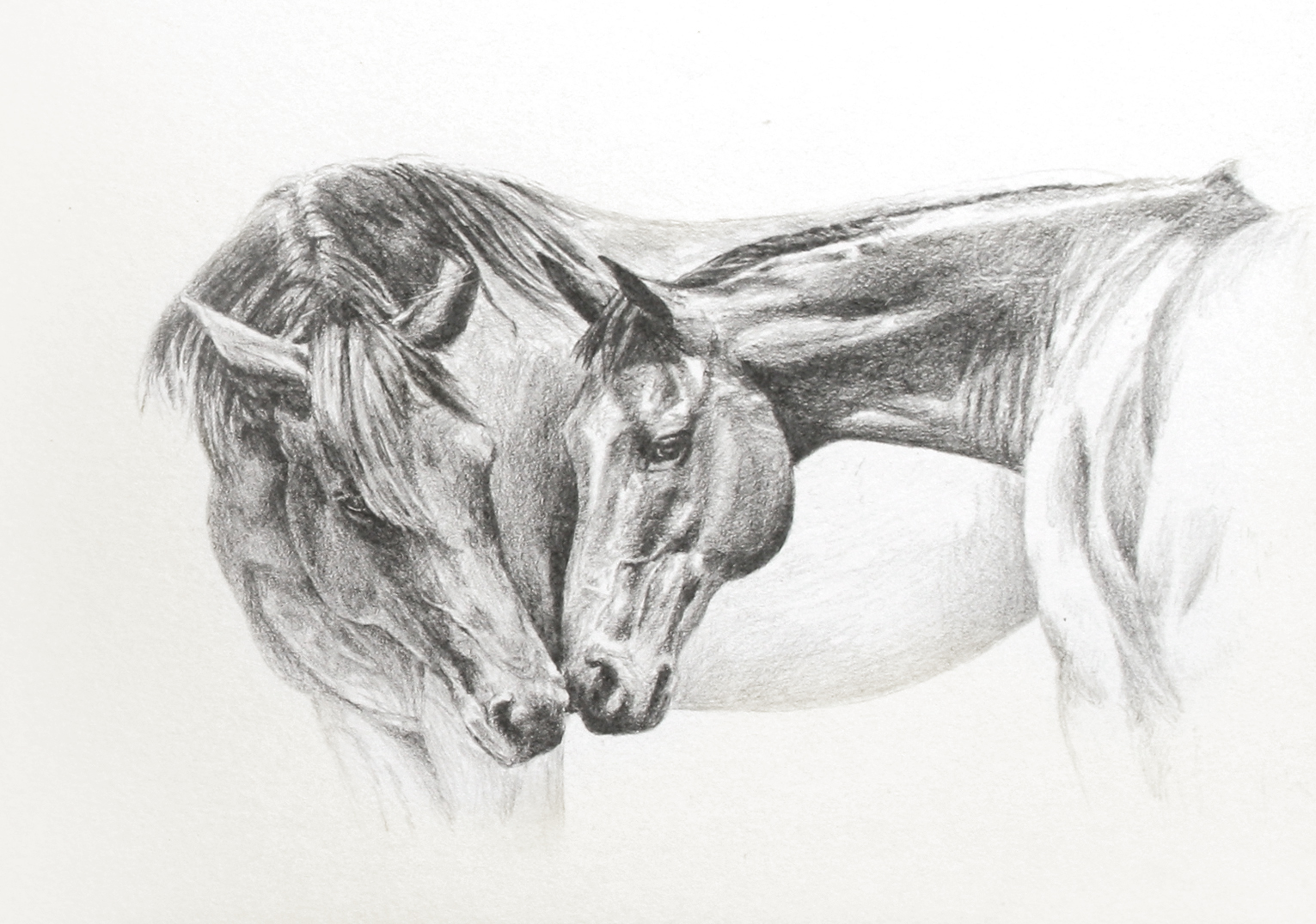 Ali Bannister: 'Gentle Touch' Sketch