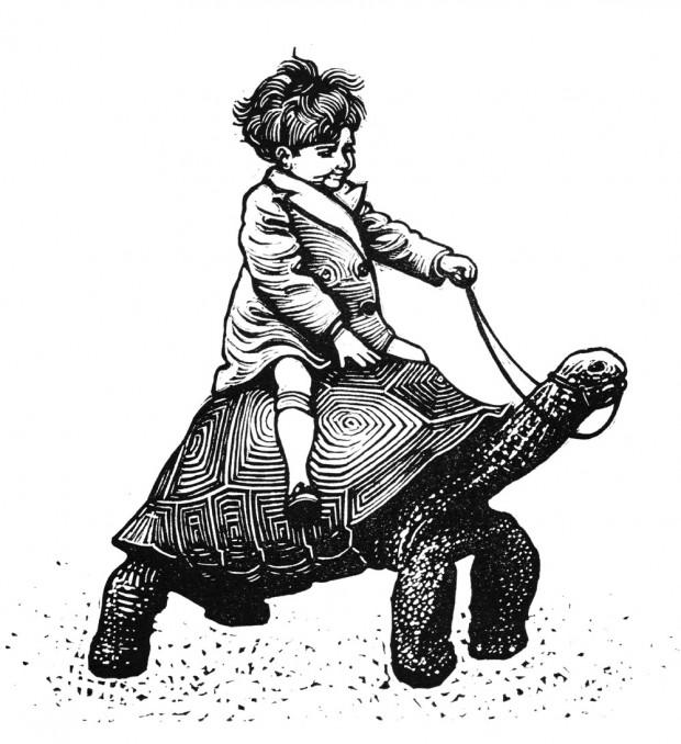 Nick Morley.tortoise_boy