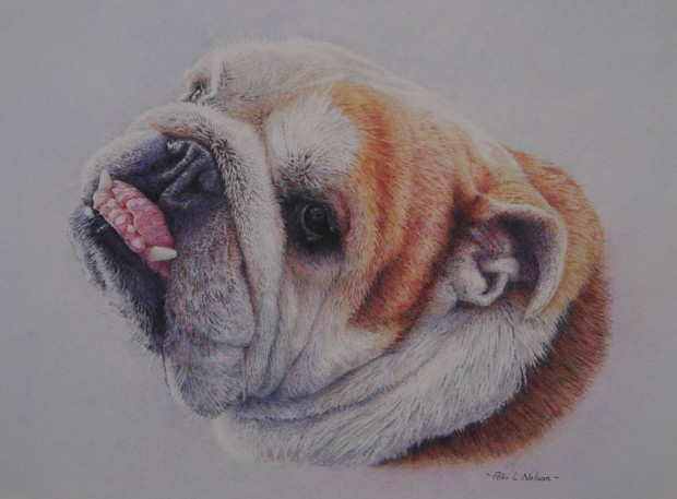 Peter Nelson: 'Chester', coloured pencil on paper