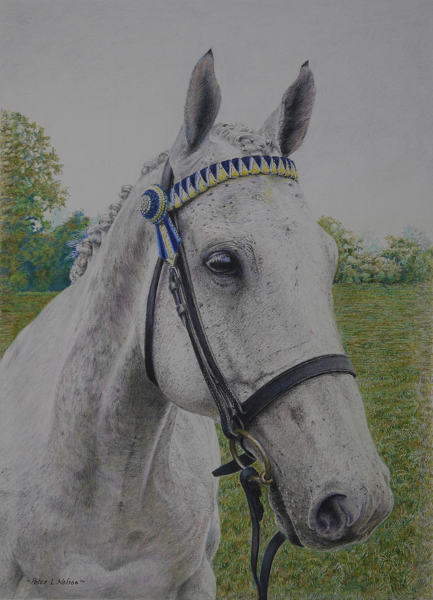 Peter Nelson: 'Graham', coloured pencil on paper