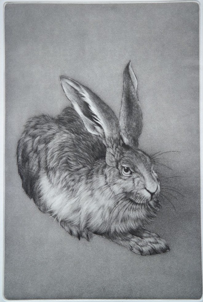 Clive Riggs: 'Durer's Hare', etching and mezzotint