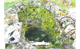 Roisin Cure: 'Old Well'