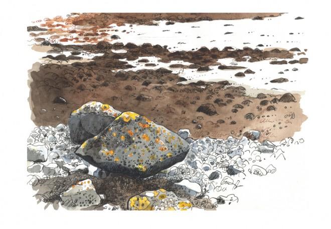 Róisín Curé: 'Tribute to Clive James the Poet', brush pen and ink, fountain pen (platinum carbon pen) and watercolour (Schmincke)