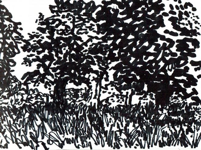 James Hobbs: 'Park', marker pen