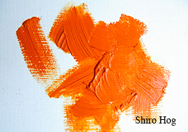 Jacksons Shiro Brushes oil paint