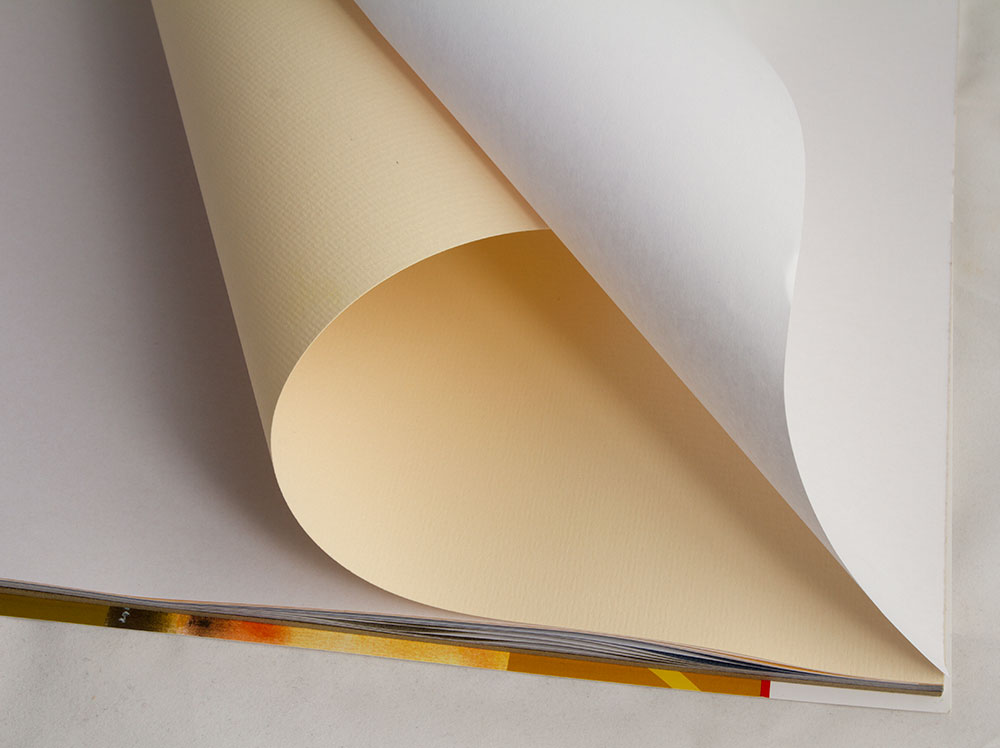 Hahnemuehle Pastellfix Paper Jackson S Art Blog