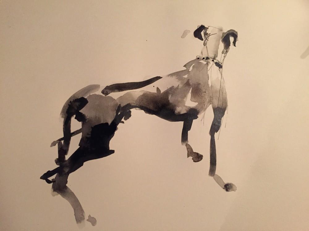 Dog Sketch ink on paper, 25x20cm 2015 Paul Bell