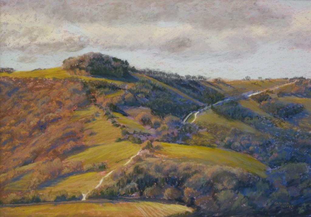 shining path, pastel 16x11, 2015
