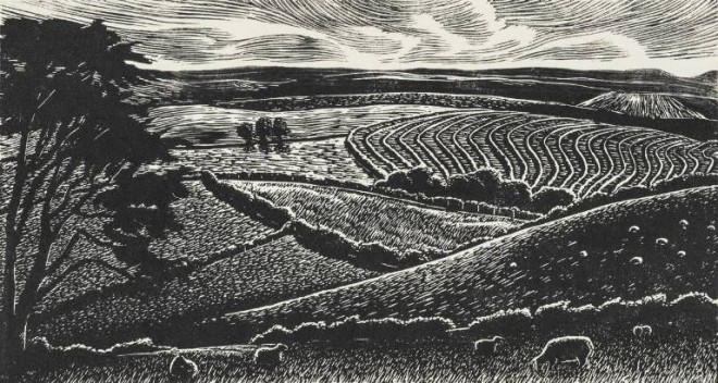 Christine Howes: 'Sheep on a Hill', wood engraving