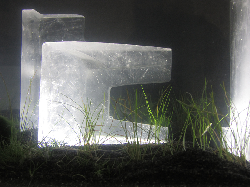 Conservation of a New Landscape(detail) (2016) by Antonia Bañados. Installation with casted glass, 153 x 38 x 120 cm