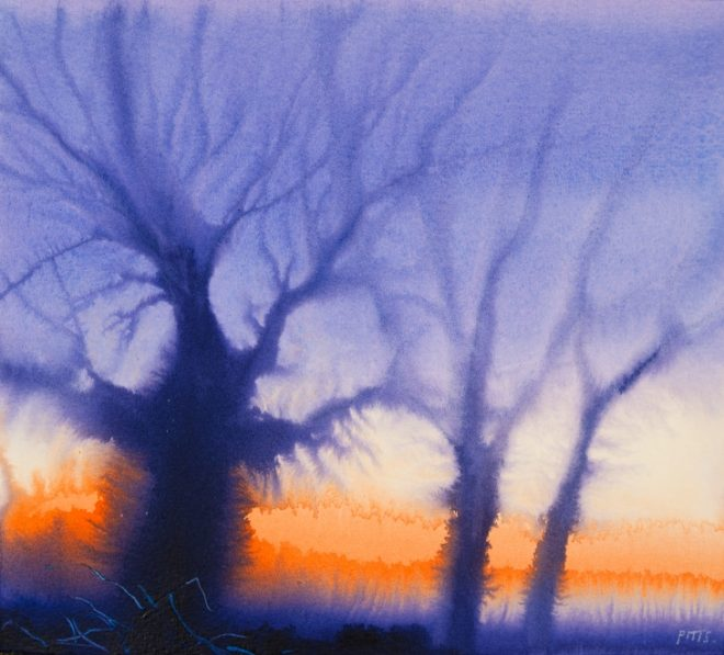 Jonathan Pitts: 'Sunset Oak, Runnymede', Acrylic and watercolour on paper, 25.5cm x 28cm