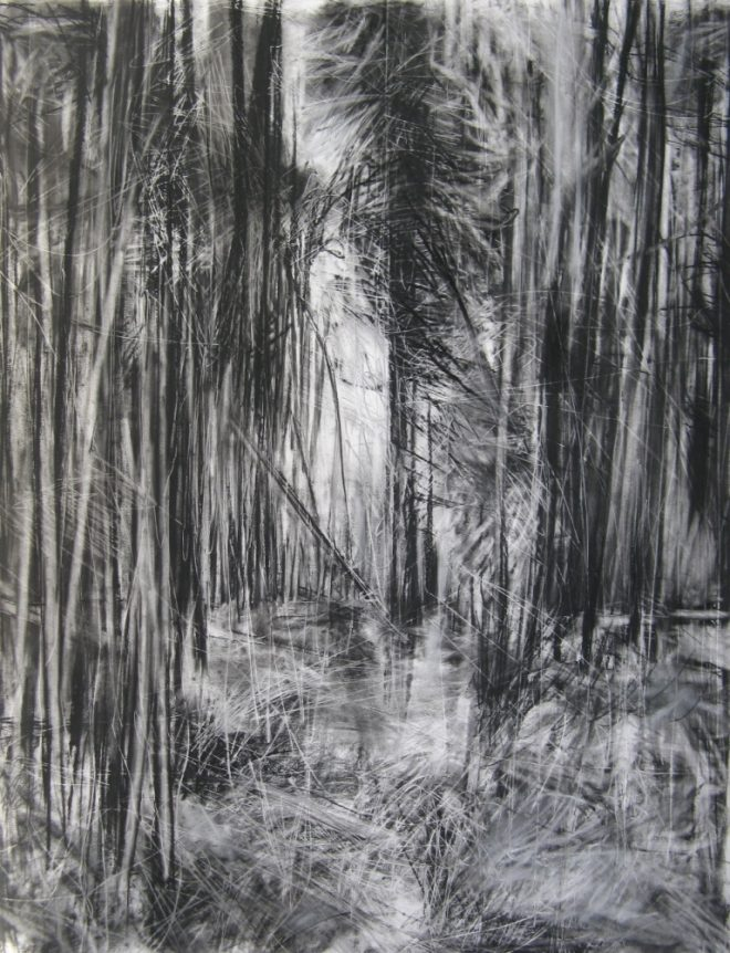 Janine Baldwin: 'Cropton Forest I', charcoal, graphite and pastel on paper, 90x70cm