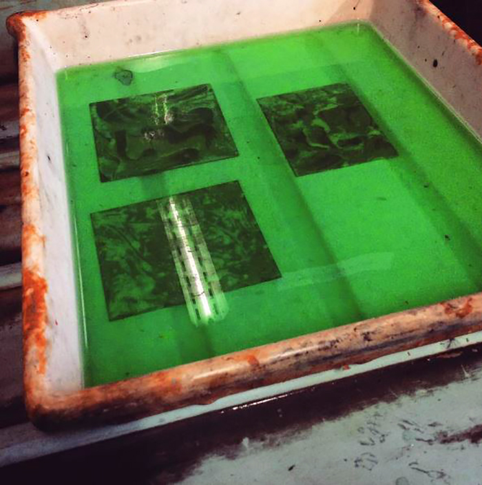 The soap ground etchings biting in the mordant during an etching course at Green Door Printmaking Studio, Derby.
