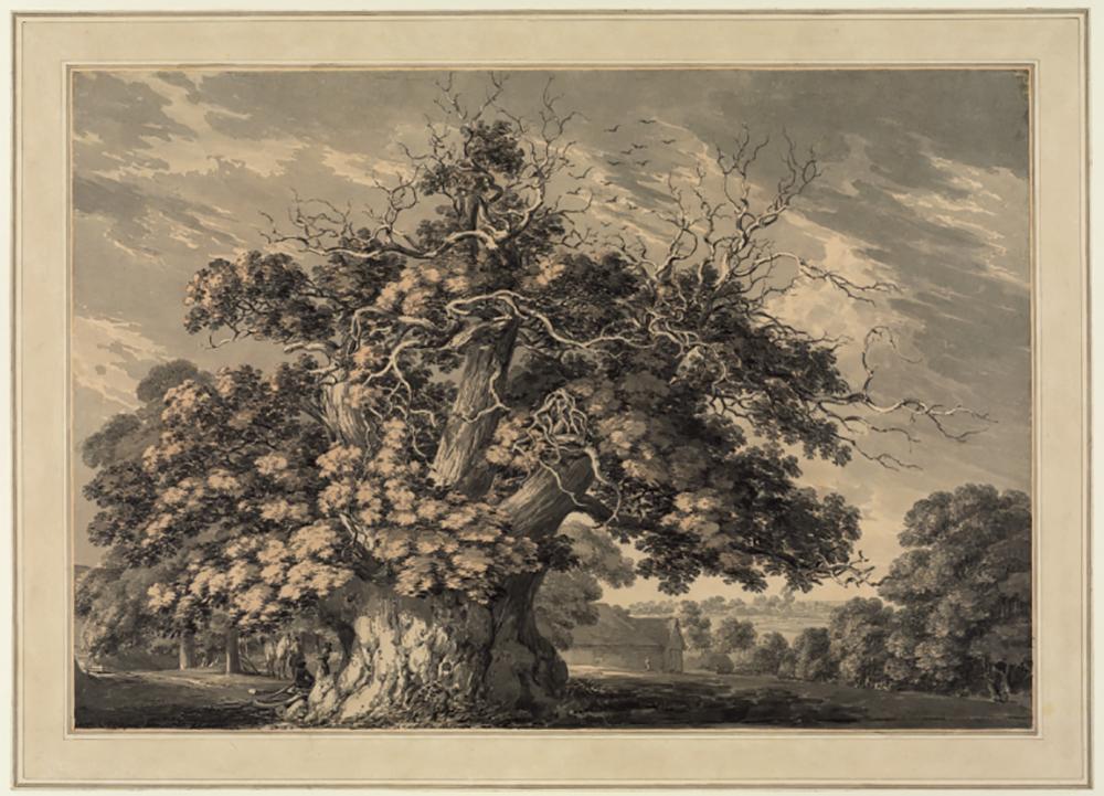 Landscape-with-a-large-oak-tree-Thomas-Hearne-1744-1817-768x554