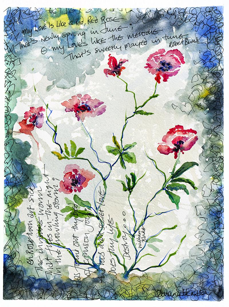 ROSES by Amanda Hamilton