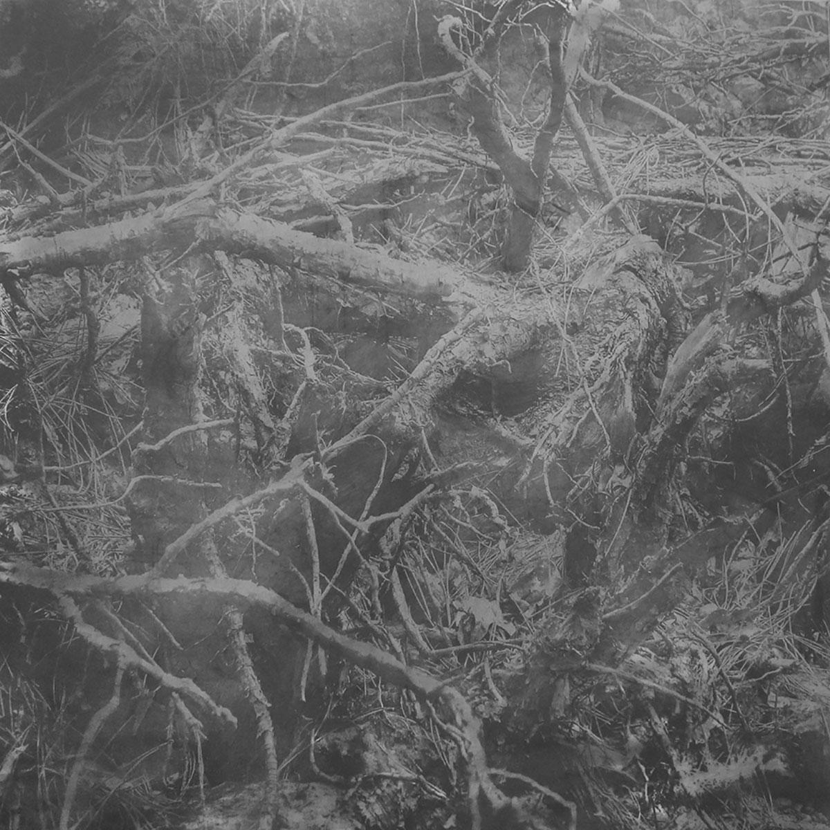 Lee Wagstaff Evil Graphite, 100 x 100 cm,