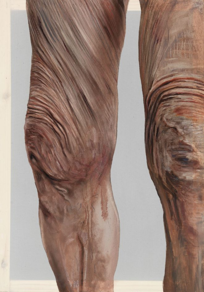 Observing Geri Morgan Emma Hopkins oil and coloured pencil on polyester, 42x29cm, 2015