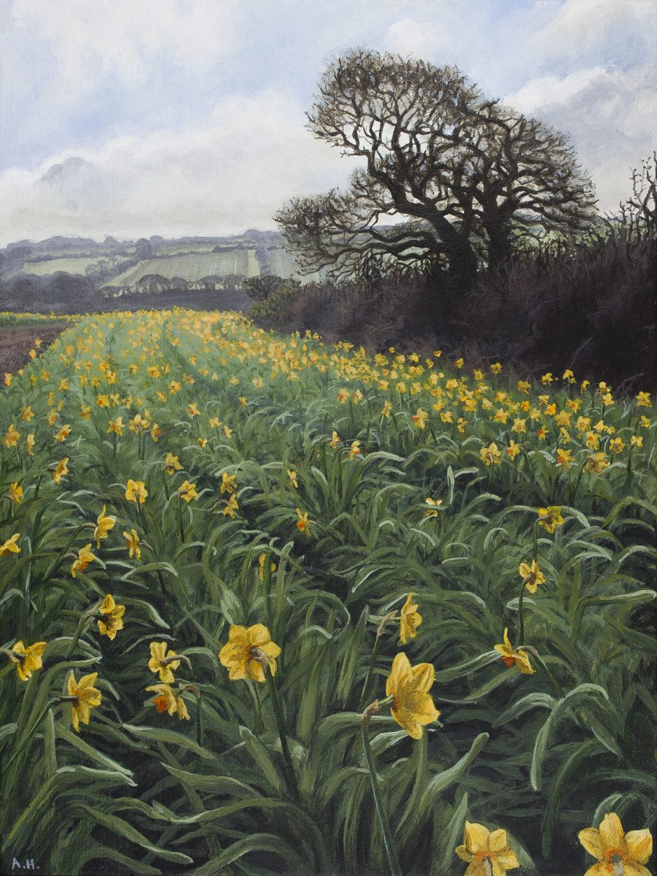 A Host of Golden Daffodils Alice Hole Acrylic on linen, 23 x 30.5cm, 2016