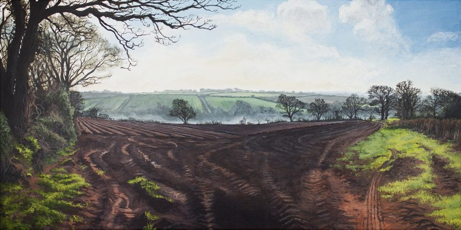 Fields Ploughed and a Scattering of Spring Alice Hole Acrylic on Linen, 60 x 30cm, 2016