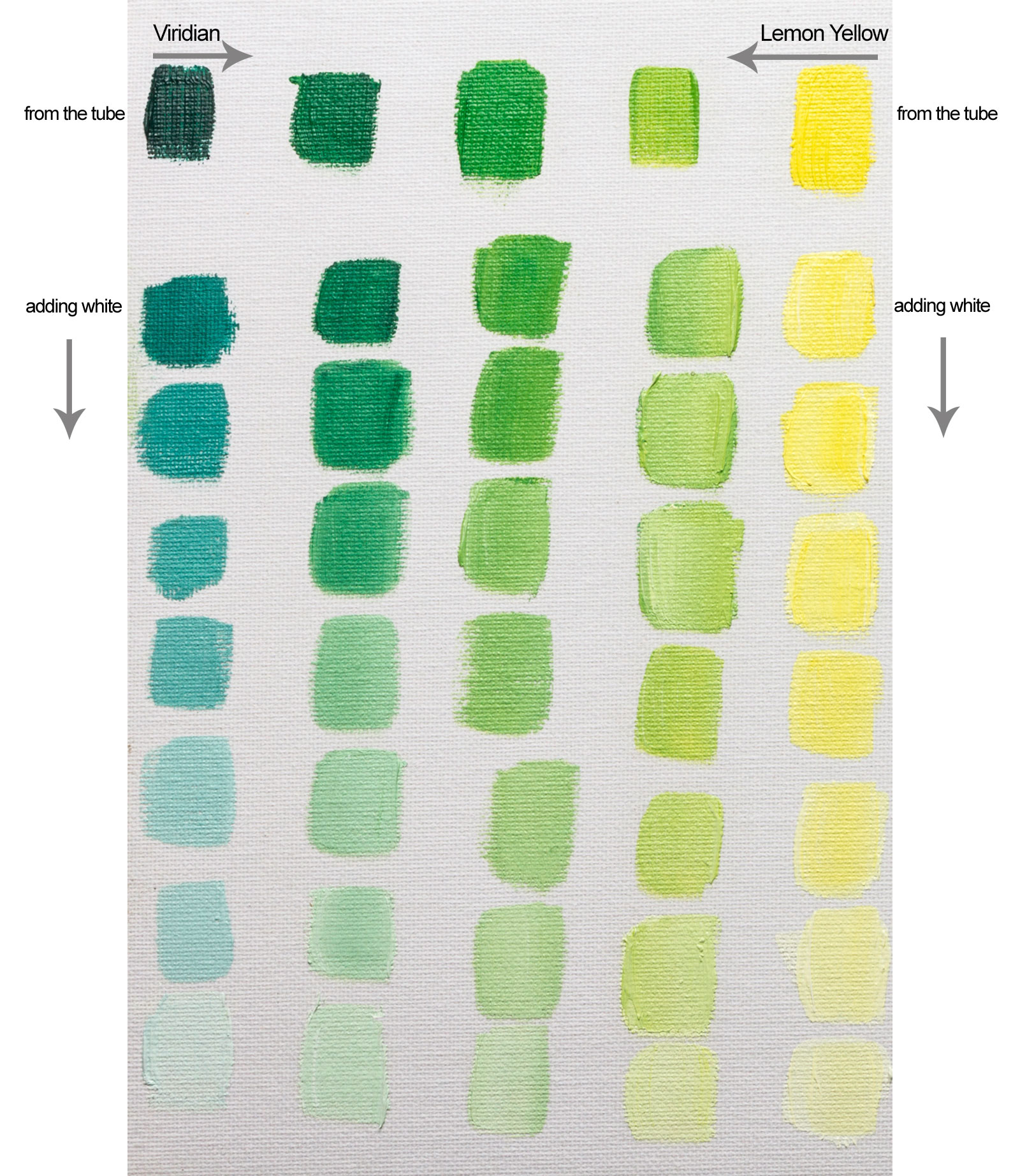 Colour mixing with williamsburg viridian oil paint jacksons art williamsburg viridian lemon yellow nvjuhfo Image collections