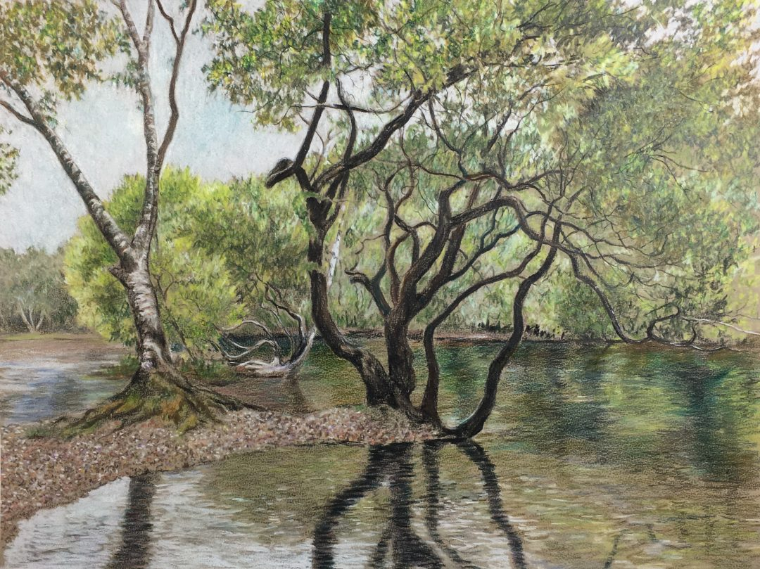 Judith Crown - Coloured Pencil Landscapes and Nature - Jackson\'s Art ...