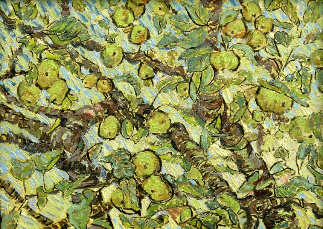'Branch of Apples' Oil on canvas, 54 x 39cm, 2016
