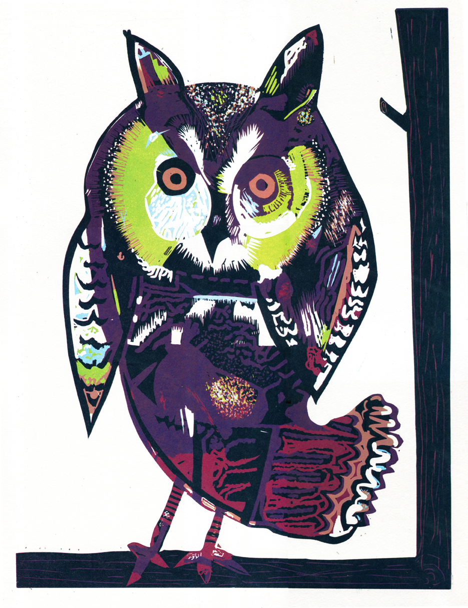 'West Country Owl' Steve Edwards Reduction Linocut