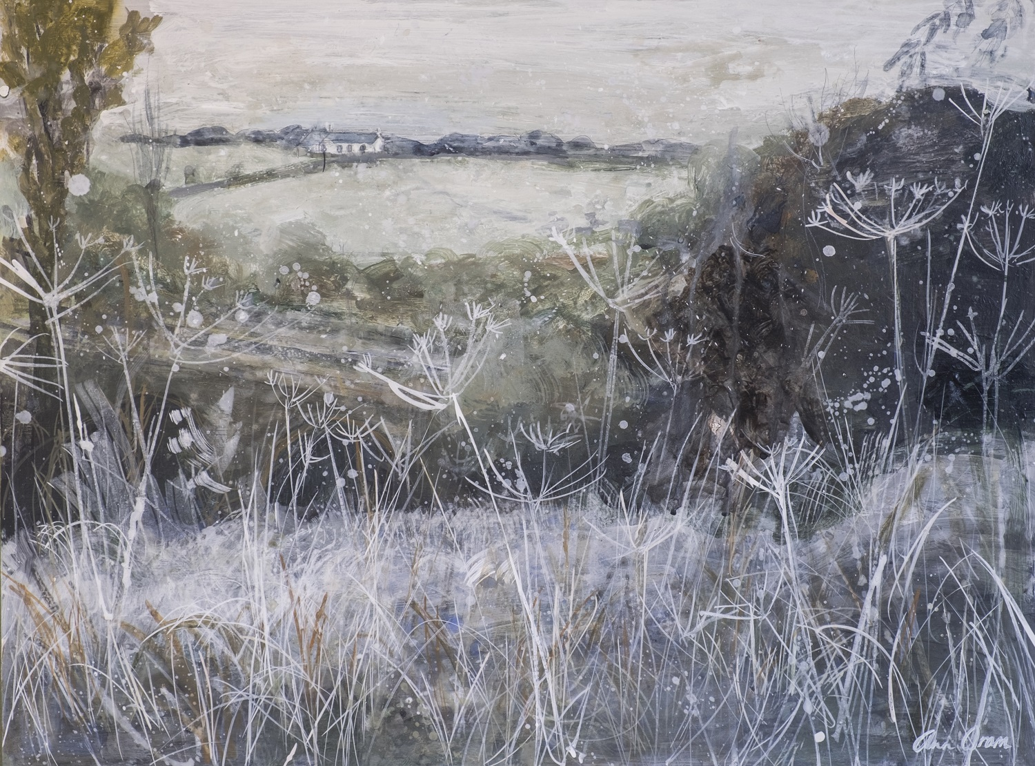 'Allanton, Mid winter Snow and Seedheads' Ann Oram Acrylic on board, 46x61cms, 2017